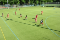 Fabian Hockey - 17.05.2012 16-50